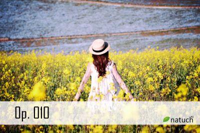 Op_010.mp3 楽曲イメージ